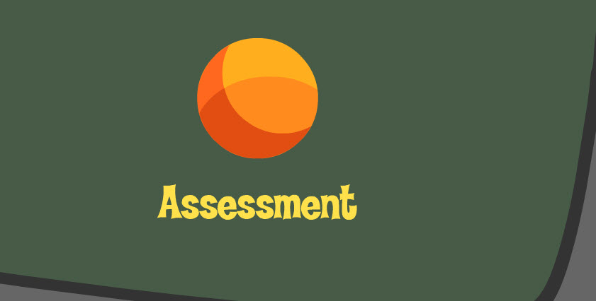Elementary School Assessment image